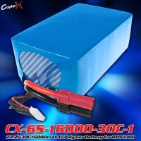 CopterX (CX-6S-16000-30C-1) 22.2V 30C 16000mAh Li-Polymer Battery for DJI S1000